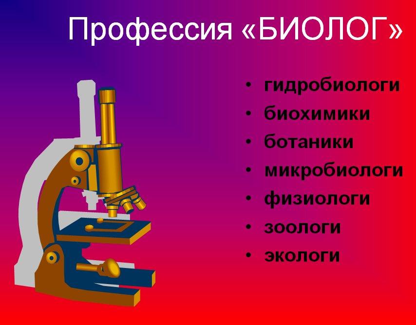 аксессуаров работа связанная с биологией период: Деревушка